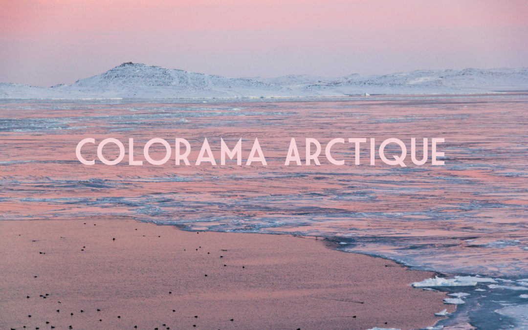 COLORAMA ARCTIQUE